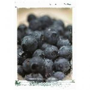 bluebereries
