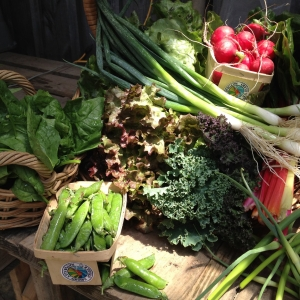 Canticle Farm Spring Share