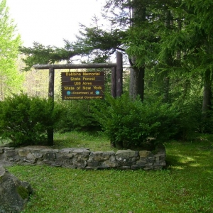 This is an entrance to Dobbins Memorial Forest where you can start your hike or