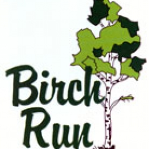 Photo of Birch Run Country Club