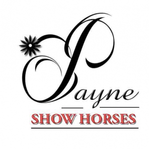 Photo of Payne Show Horses