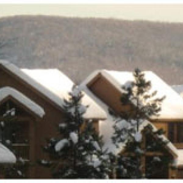 Holiday Valley Rental properties