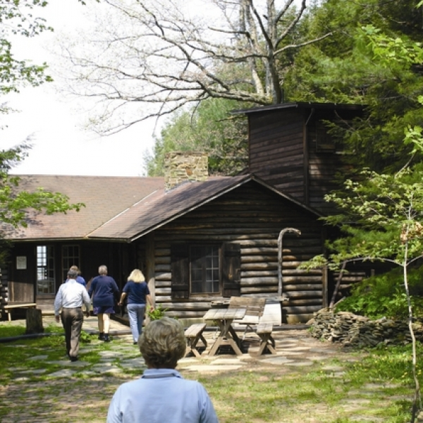 Historic chestnut cabin