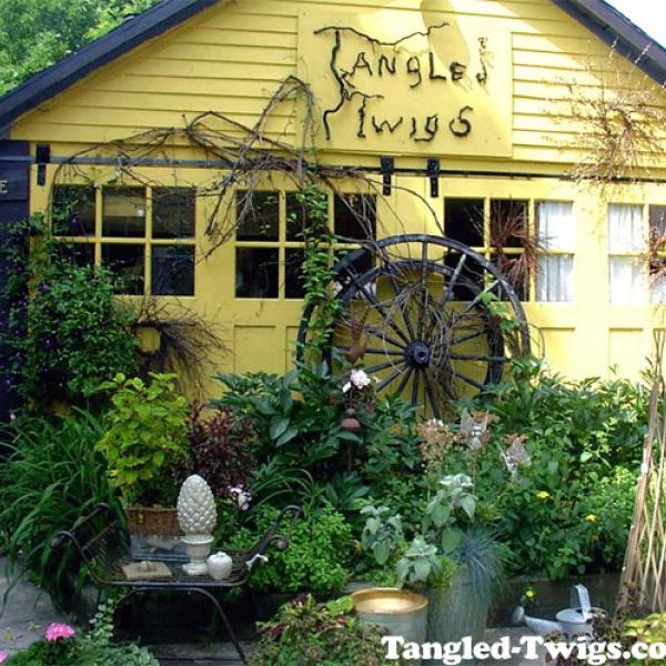 Tangled Twigs