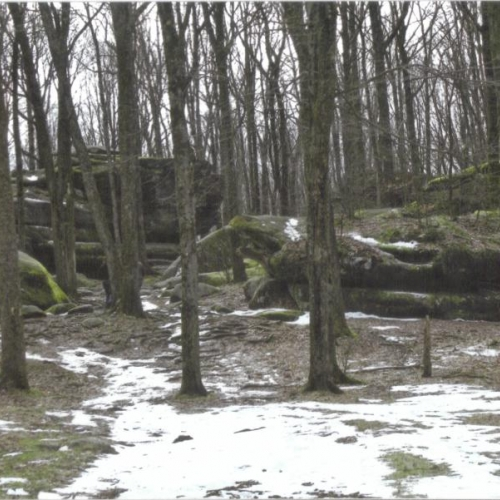 Photo of Thunder Rocks at Allegany State Park