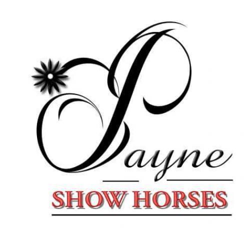 Photo of Payne Show Horses