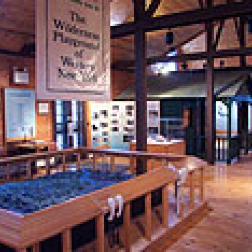 Photo of Old Quaker Store Museum