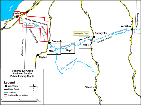 Preview of Cattaraugus Creek Map from NYS DEC