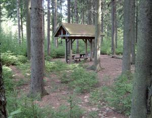 Small Pavilion at Dobbins Memorial State Forest