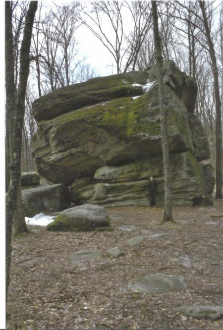Big Rock at Thunder Rocks at Allegany State Park