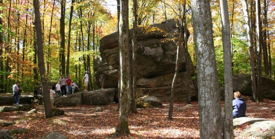 Leaf crunching at Thunder Rocks