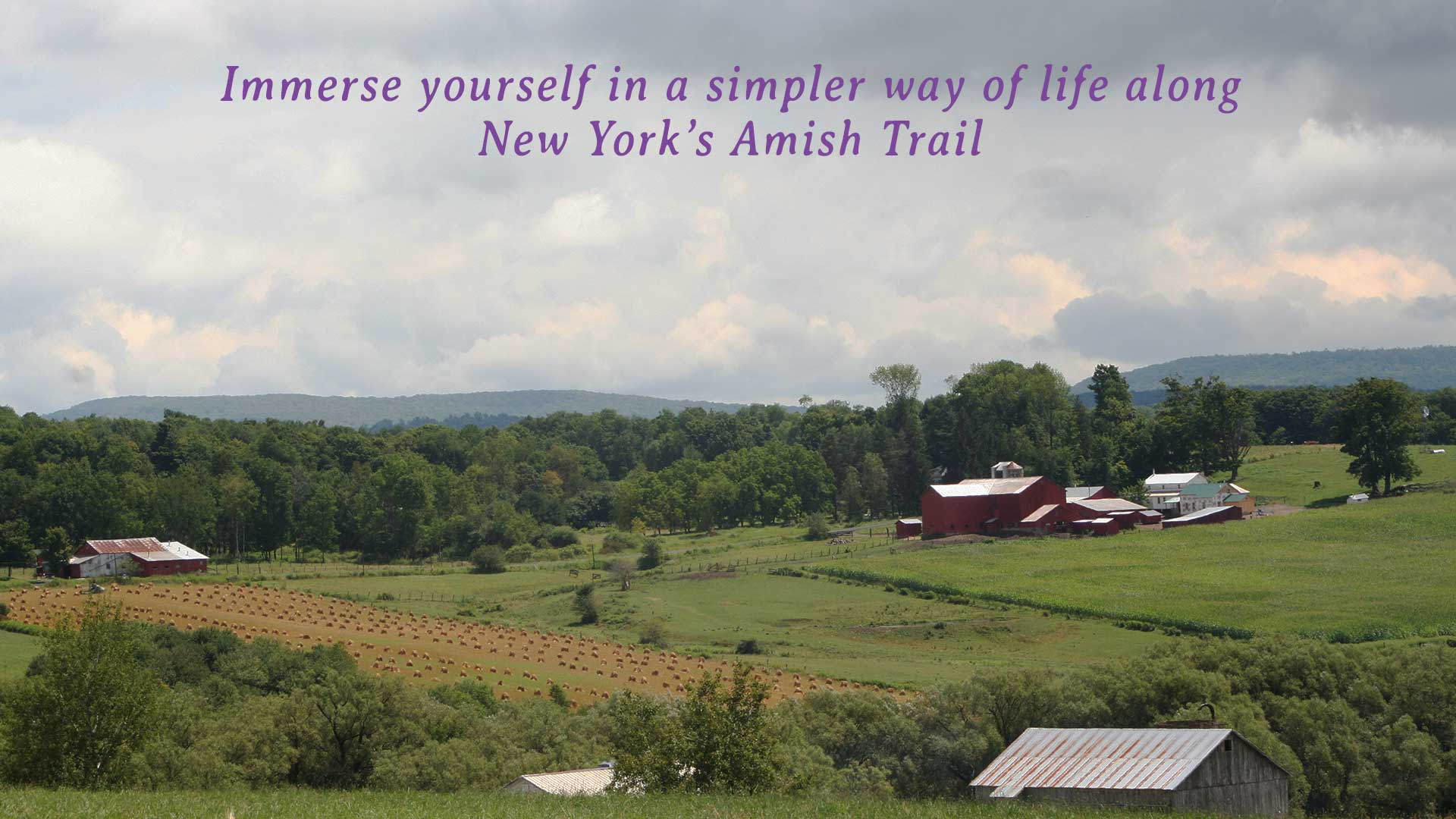 Immerse Yourself in a Simpler Way of Life along NY's Amish Trail