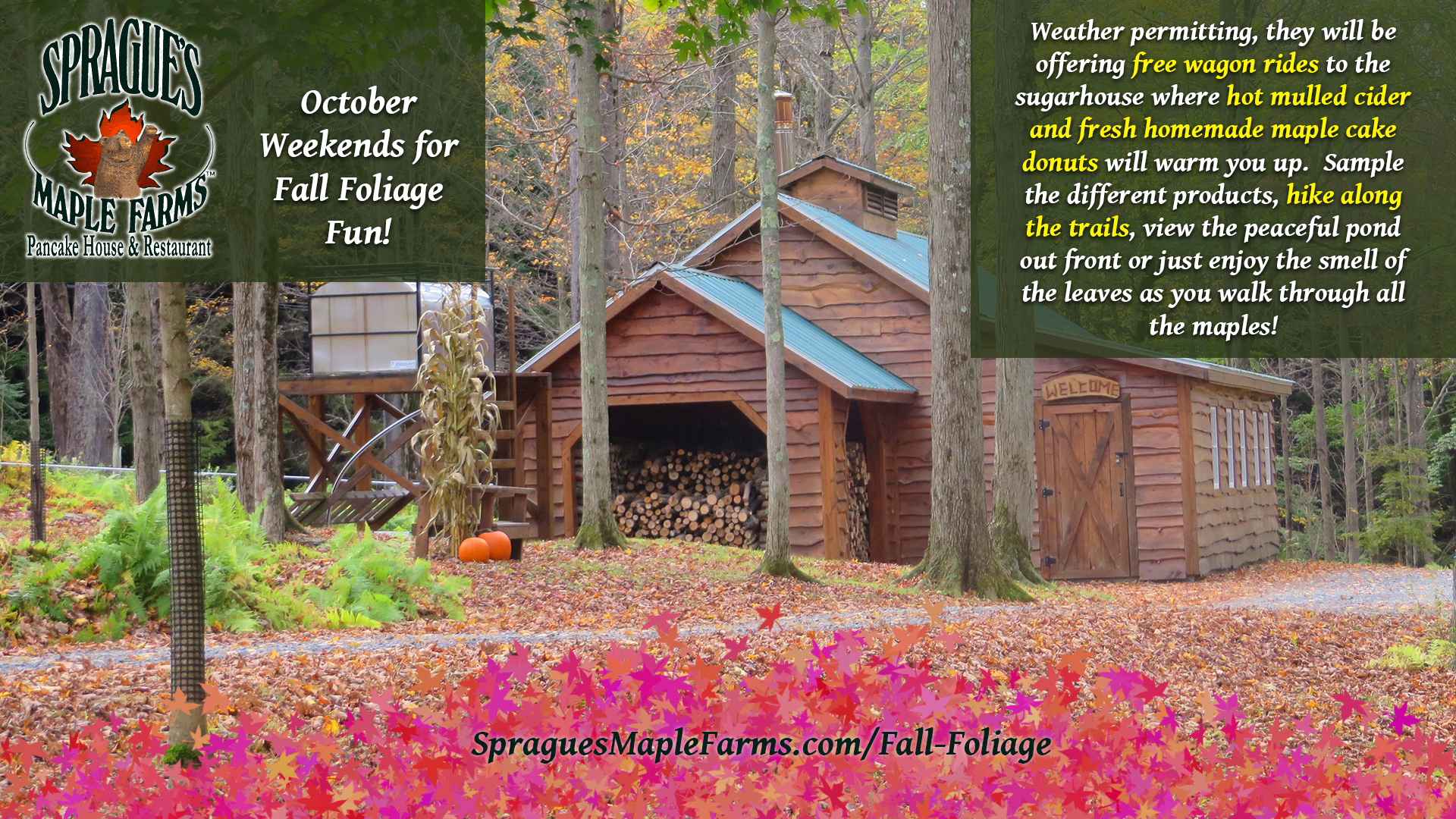Sprague's Maple Farms, Pancake House & Restaurant Fall Foliage Weekends!