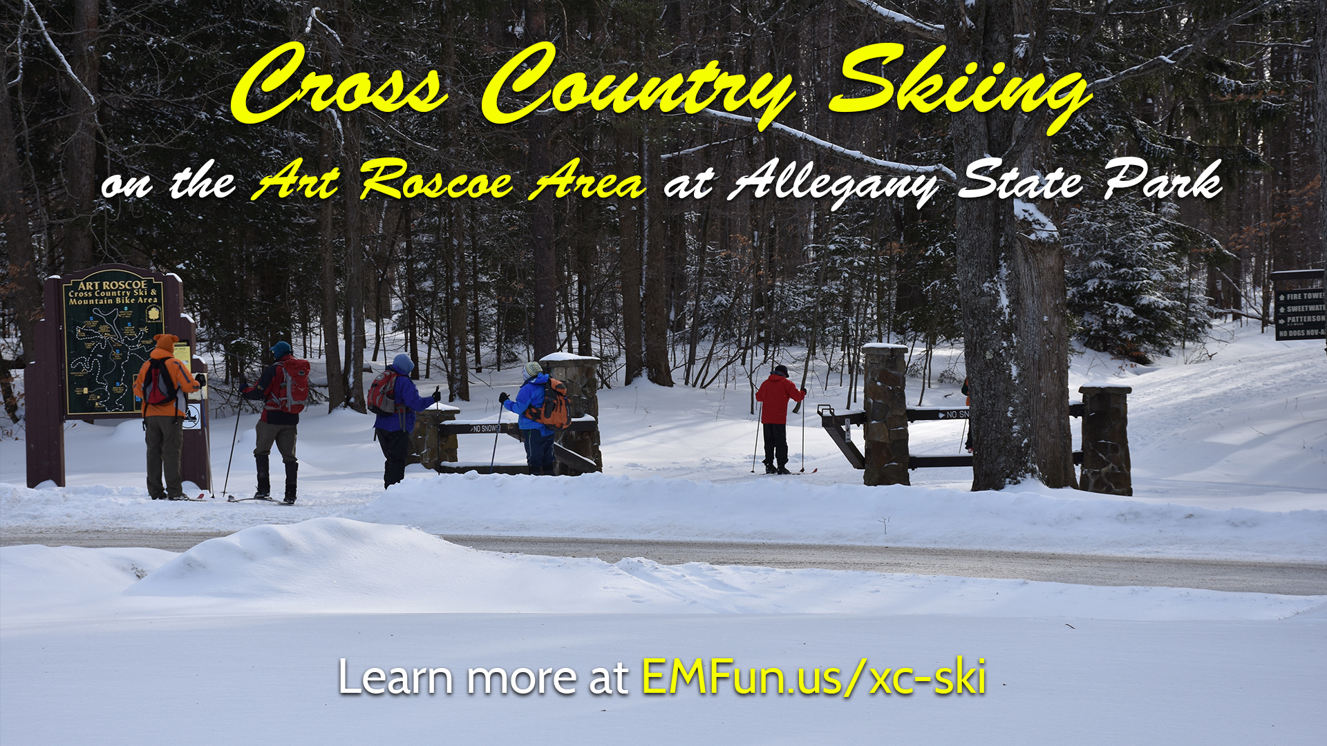 Cross Country Ski at Art Roscoe in Allegany State Park