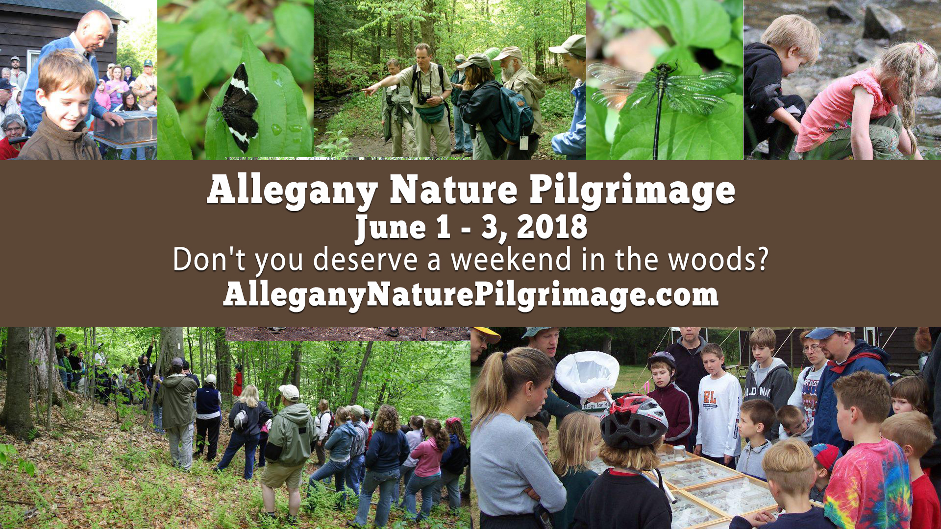2018 Allegany State Park Nature Pilgrimage