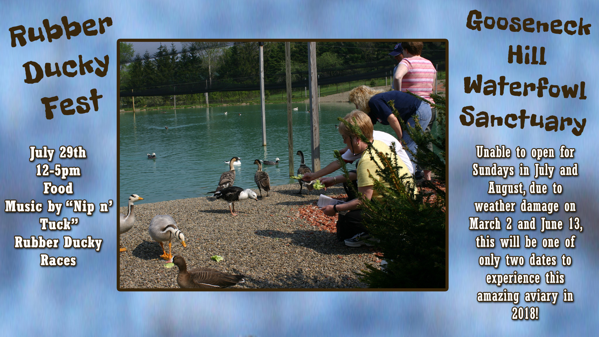 2018 Rubber Ducky Fest at Gooseneck Hill Waterfowl Sanctuary