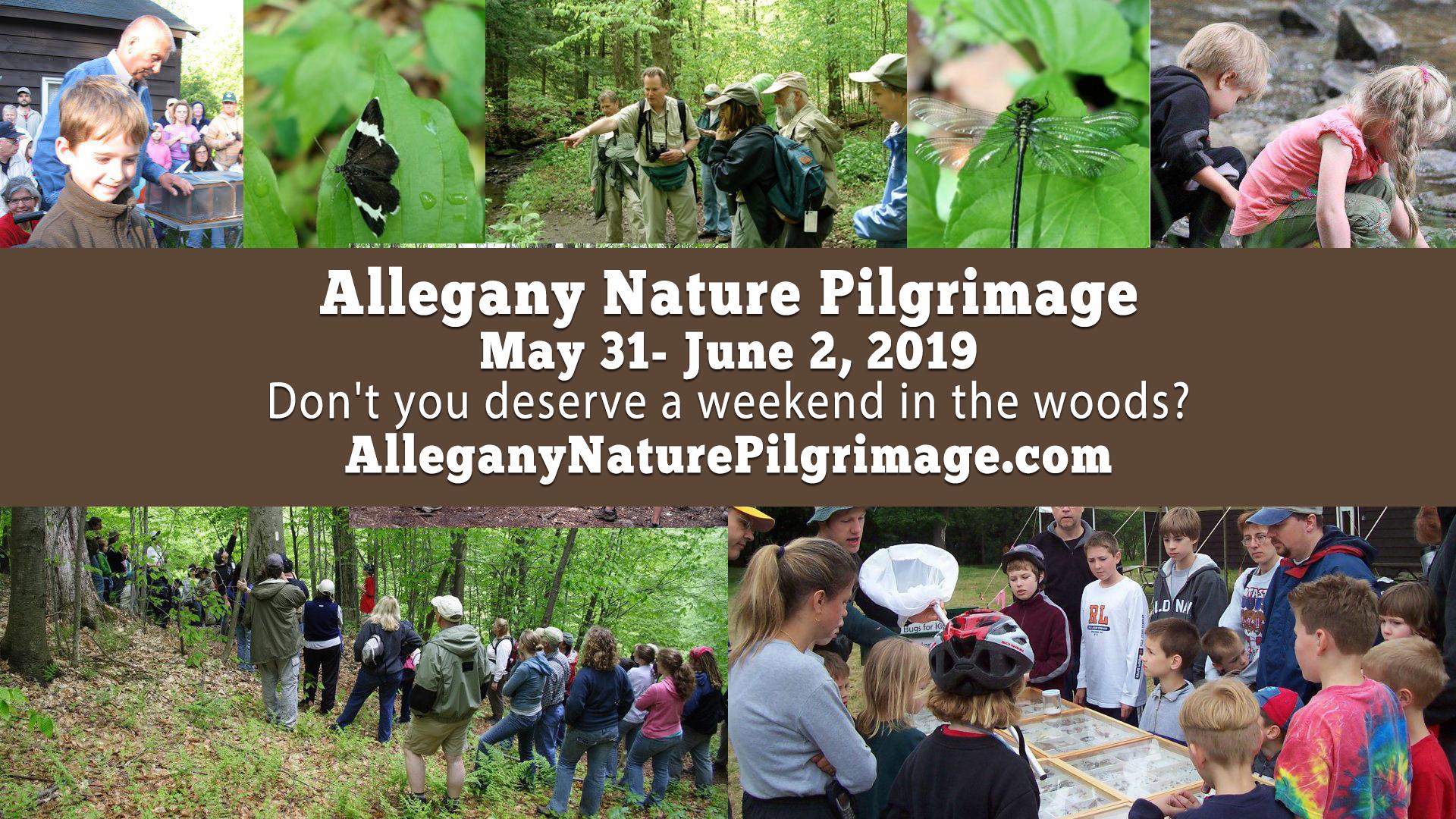 Allegany Nature Pilgrimage 2019